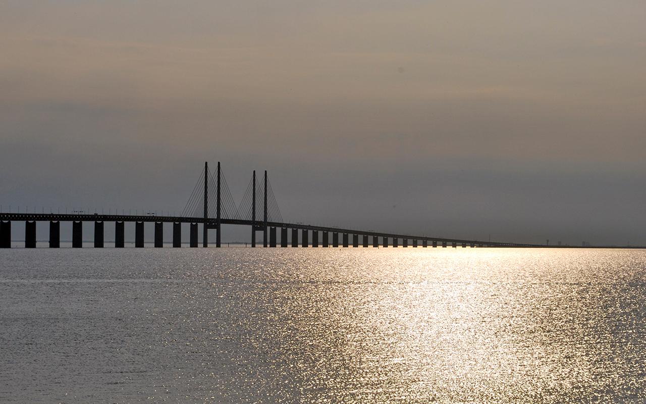 Malmölü Doğan