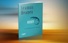 SEAMUS HEANEY'DEN BİR ŞİİR KİTABI: KUZEY