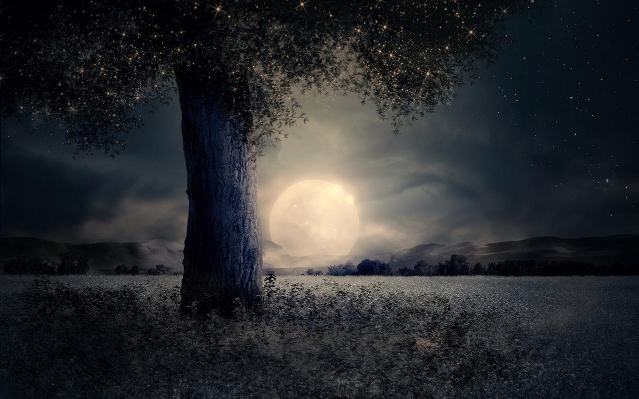 Ay Her Yerde Neşeli