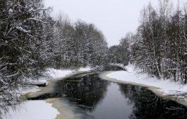 Kar İnadı