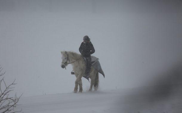 101 Yıl Önce Bir Kış Günü Vurulan Gazi Hasan Çavuş'un Atı