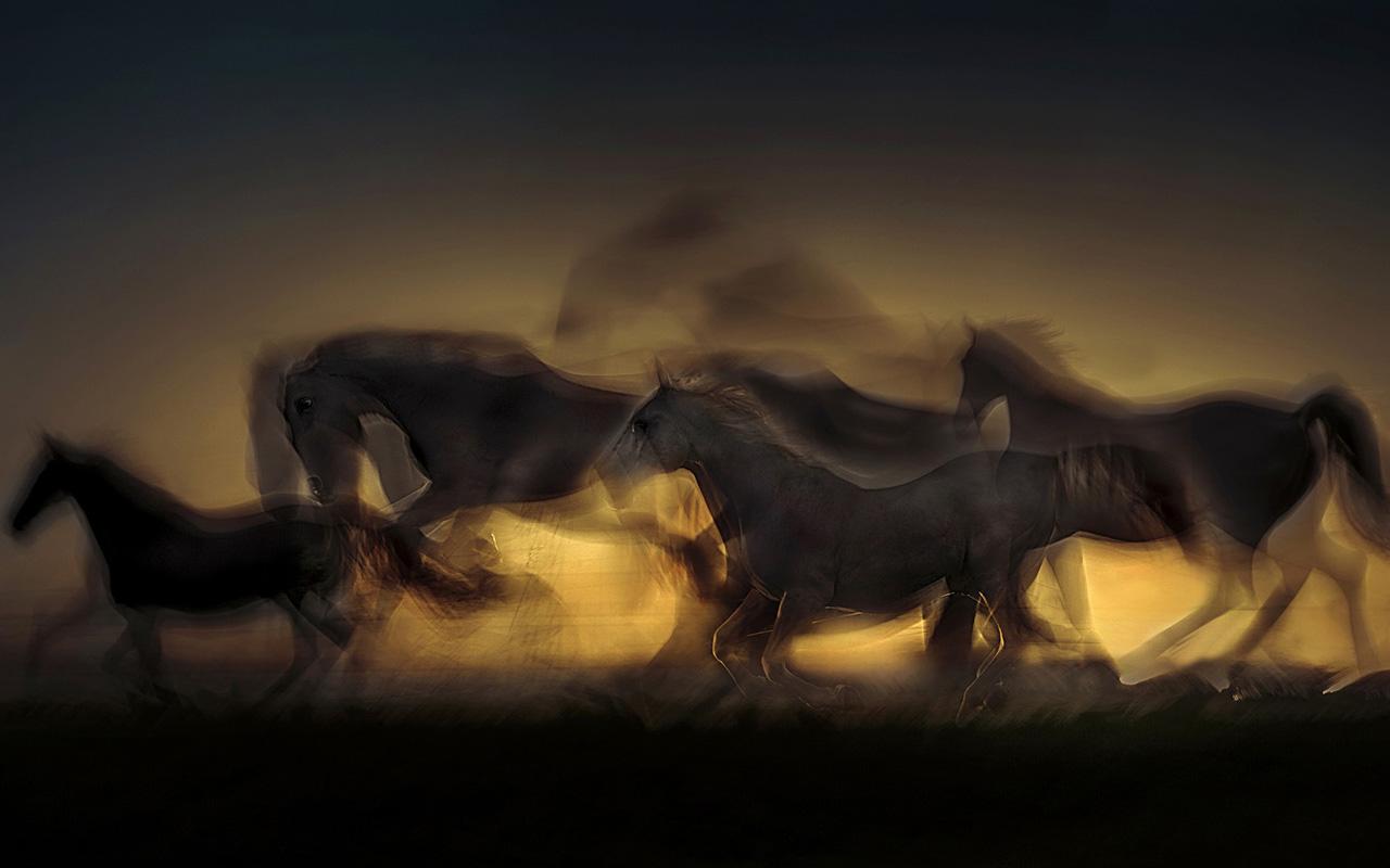 Sır At
